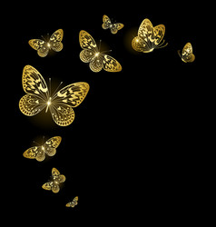Stylized gold butterflies vector