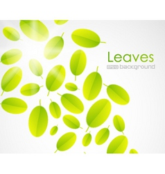 sun leaves vector image vector image