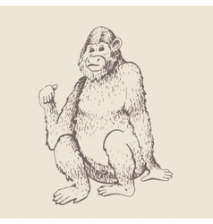 Monkey sketch engraving vector