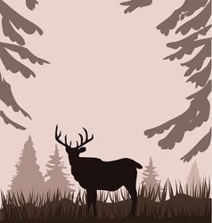 deer in the woods vector image