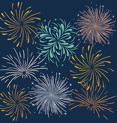 Firework design vector