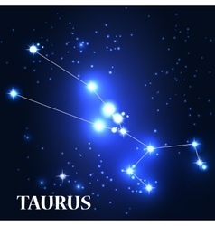 Symbol taurus zodiac sign vector