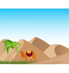 Oasis in desert vector