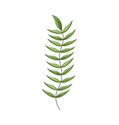 Green stem with many leaves vector