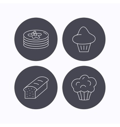 Pancakes brioche muffin and toast bread icons vector