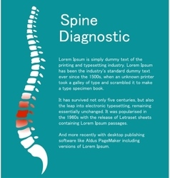 Human spine Template with backbone vector image vector image