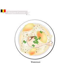 Waterzooi or belgian creamy soup with chicken vector