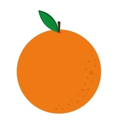 Whole orange icon vector