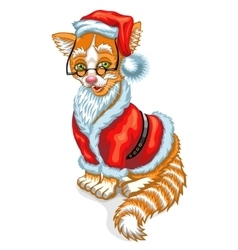 Cat santa claus christmas vector