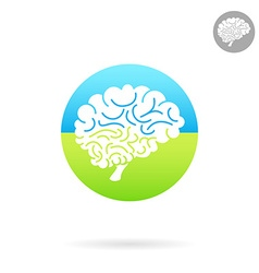 Medical icon of brain vector image vector image
