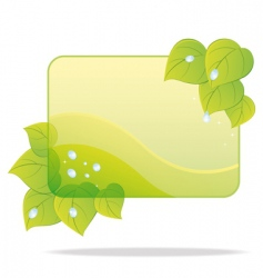 eco card with green leaves vector image vector image