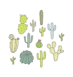Set of cactus and succulents vector