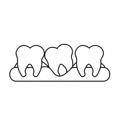 Molars dental care related icon image vector
