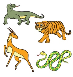 Animals set antilopa tiger varan boa vector