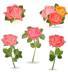 Collection lovely of roses for your design vector