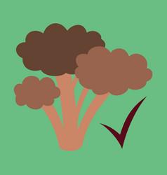 Broccoli flat isolated on background fresh vector