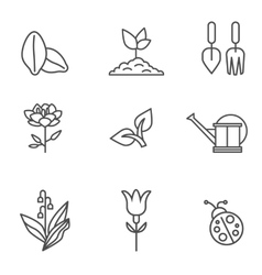 Plants icons vector image