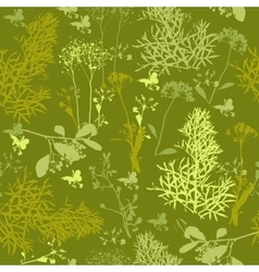 Seamless pattern of silhouette various herbs vector image