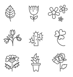 Plants icons vector