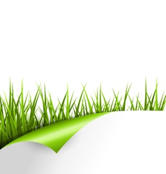 Green grass with wrapped paper sheet isolated on vector