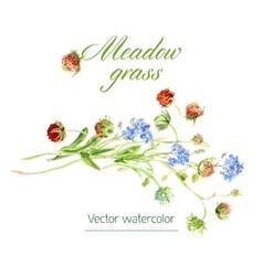 Watercolor sketch vector image