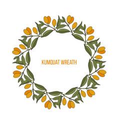 Kumquat citrus japonica wreath vector