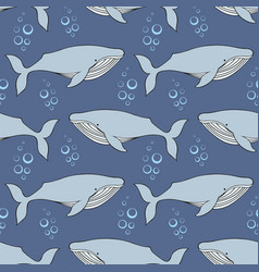 Whales seamless pattern in the style of the vector