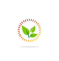 green leaf organic protection logo vector image vector image