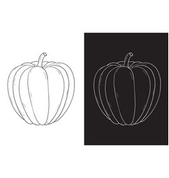 Pumpkin hand drawing sketch on white and black vector