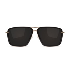 Sunglasses Isolated on white background vector image