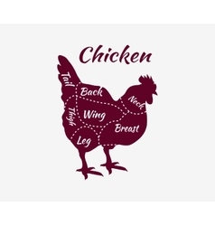 Typographic Chicken Butcher Cuts Diagram vector image vector image