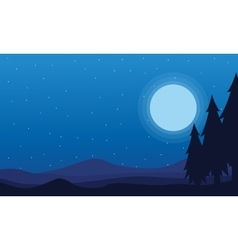 At night Spruce and hill scenery of silhouettes vector image vector image