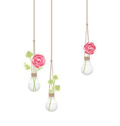 Flower in a light bulb vector
