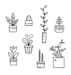 Line house plants icon set vector