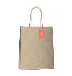 Winter sales shopping bag with snowflakes vector