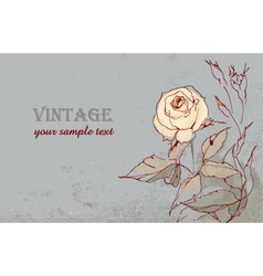 vintage postcard with a beautiful rose hand-drawin vector image