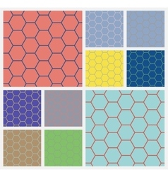 hexagonal cellcolorful background vector image