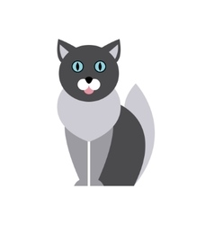 British blue cat breed primitive cartoon vector