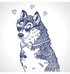 Husky sketch vector