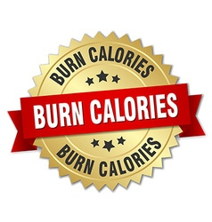 Burn calories 3d gold badge with red ribbon vector