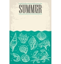Concept of summer poster with sea shell coral vector