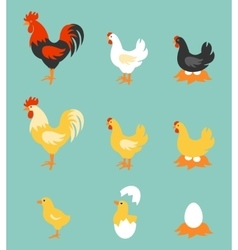 Colorful farm birds collection vector image