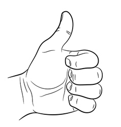 Hand raised thumb up on white background vector