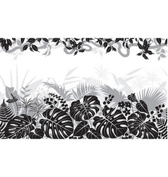 tropical black and white pattern vector image vector image