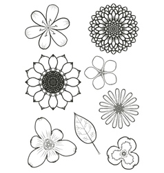 flowers002 vector image vector image