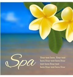 Spa concept with blurred seaside background and vector