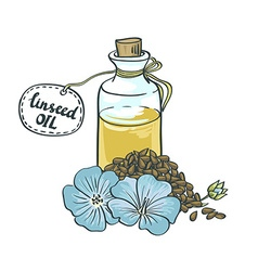 Flax Seeds Oil in a Glass Bottle vector image