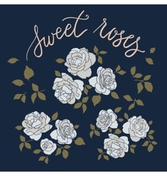 Set of three hand drawn rose bouquetes with vector