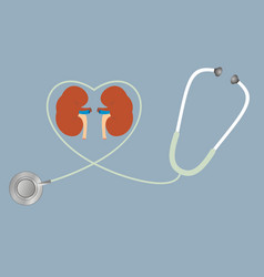 A concept for healthy kidneys stethoscope in vector