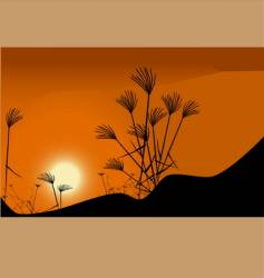 grass and sunset vector image vector image